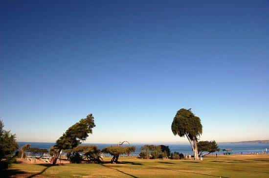 Ellen Browning Scripps Park- La Jolla Cove