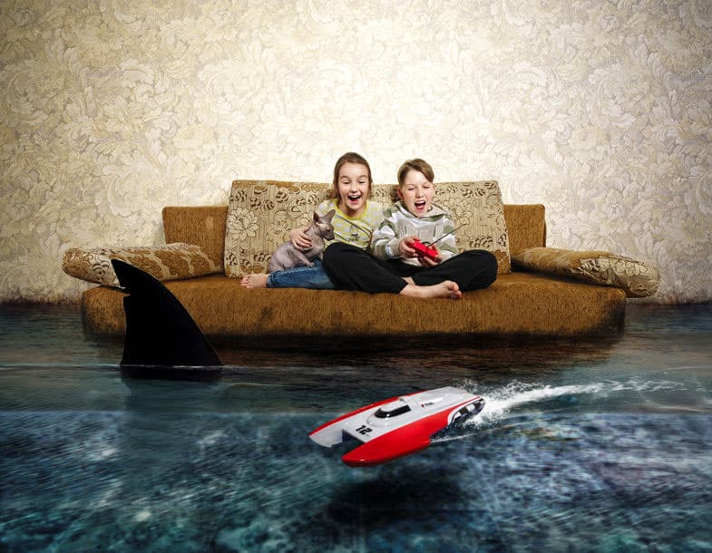 How to remove a shark from your flooded home