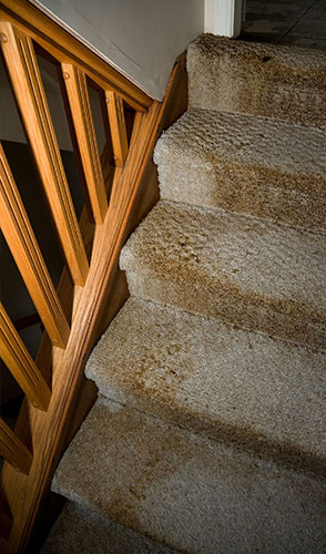carpeted stairs ruined by flood damage