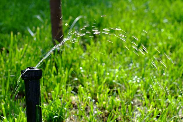 6 Signs That Your Sprinkler System Is Leaking