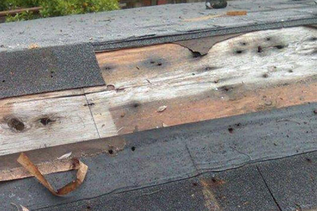 roof water damage: shingles torn off by bad weather