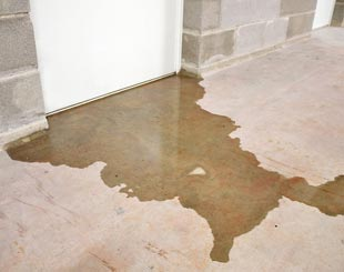 a flooded basement in San Diego